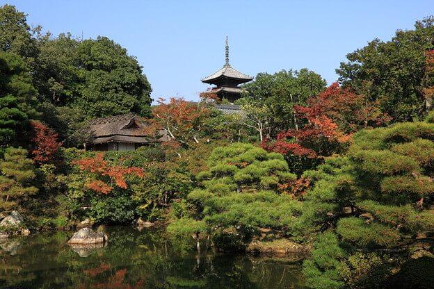 「仁和寺」の画像検索結果